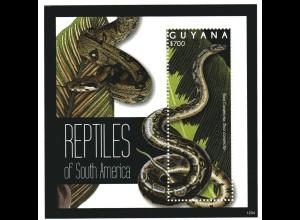 Guyana Block Reptilien von Südamerika
