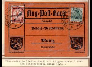 "DR., Rhein-Main Flug.-Karte Mi.-Nr. IV ""Gelber Hund"" ab Darmstadt."