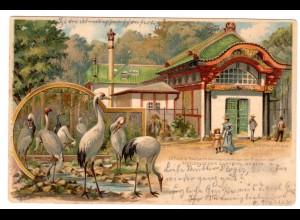 Berlin / Litho Zoolog. Garten - Stelzvogelhaus