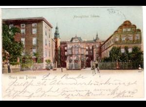 Dessau / Herzogliches Schloss